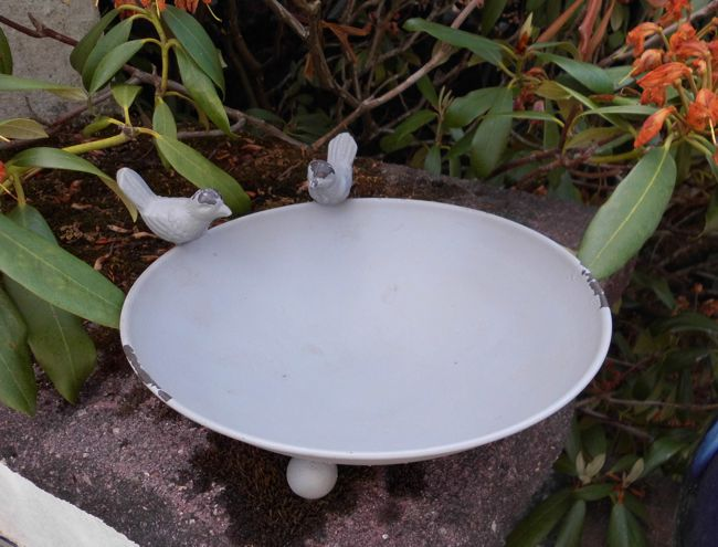 Versand Graue Vogeltränke Vogelbad Vogelfutterstelle Eisen massiv 22 cm inkl